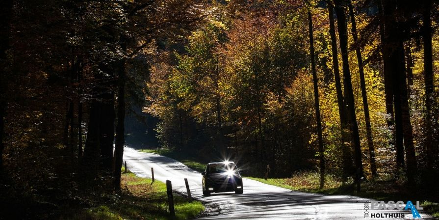 Auto die je op de weg ziet in de herfst